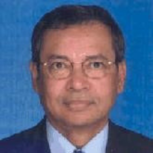 Tan Sri Mohd Radzi Abd Rahman, International Board Of Advisers 2019 - 2020, World Chinese Economic Forum (WCEF)
